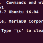 ubuntu-16-04-mariadb-password-bug-000