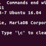 ubuntu-16-04-mariadb-password-bug-000